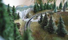 Kolejiště N