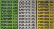 dominik_krabicky